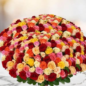 Bouquet of 1000 Mix Roses
