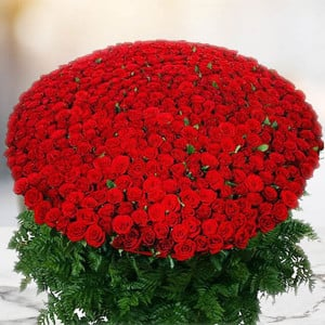 1000 Red Roses Bunch