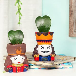 King and Queen love plant