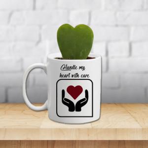 Charming Gymnocalycium Mug Plant Pot