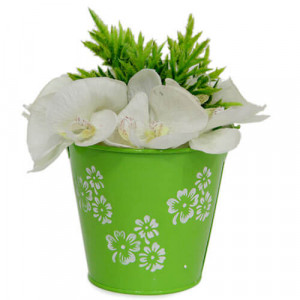 Fresh Artificial Arrangement - Online Gift Ideas