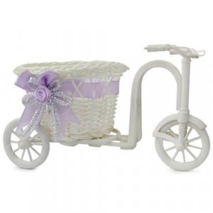 Tricycle Planter - Online Gift Ideas