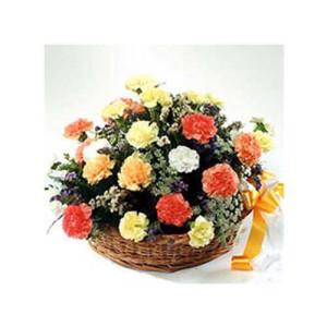 A Bundle Of Happiness 20 Carnations - Flower Basket Arrangements Online