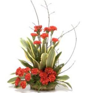 A Little Sunshine 20 Red Carnations - Flower Basket Arrangements Online