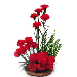 Passionate Love 20 Red Carnations - Flower Basket Arrangements Online