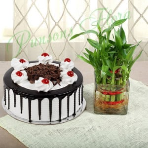 Blackforest Cake With Two Layer Bamboo - Wedding Anniversary Bouquet with Cake Delivery