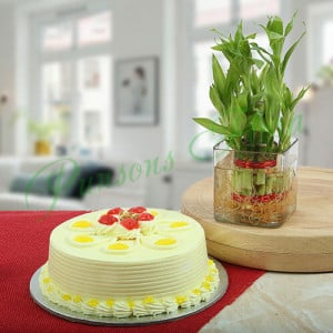 Butterscotch Cake With Bamboo Plant - Wedding Anniversary Bouquet with Cake Delivery