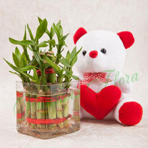Luck N Cuteness Combo - Online Flower Delivery In Kurukshetra