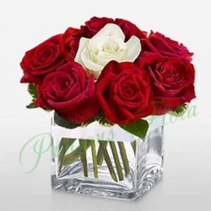 11 Red n 1 White rose in Cube Vase - online flowers delivery in dera bassi