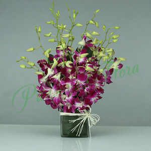 15 Purple Orchids Vase Arrangement - online flowers delivery in dera bassi
