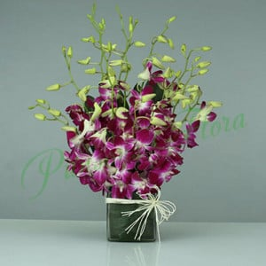 15 Purple Orchids Vase Arrangement