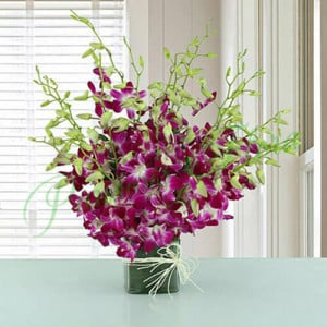 20 Purple Orchids Vase Arrangement - online flowers delivery in dera bassi