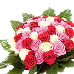 Bella Roses - Rose Day Gifts Online