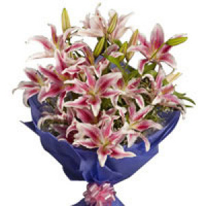 Pink Stargazer Lilies 6 Pink Lilies - Flower delivery in Bangalore online