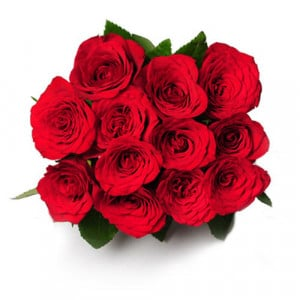 My Emotions 12 Red Roses - Send Flowers to Amreli Online