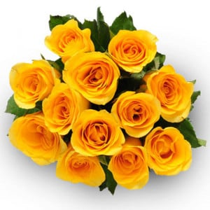 Eternal Purity 12 Yellow Roses - Send Flowers to Amreli Online