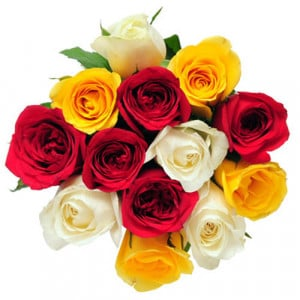 My Colorful Wishes - Send Flowers to Amreli Online