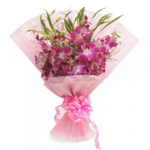 Robust Style 6 Purple Orchids - Send Valentine Gifts for Wife
