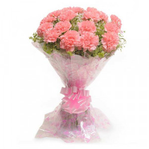 Carnival 15 Pink Carnations - Send Valentine Gifts for Wife