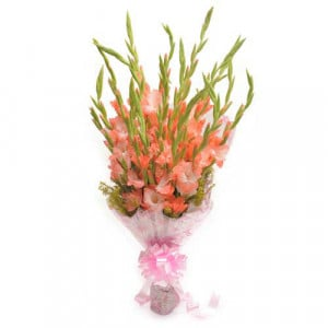 Lady Love 12 Orange Gladiolus - Send Valentine Gifts for Wife