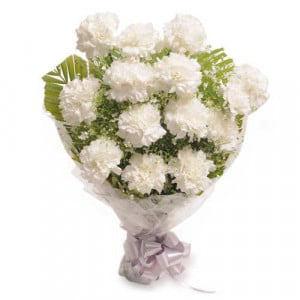 Stary 12 White Carnations - Send Valentine Gifts for Wife