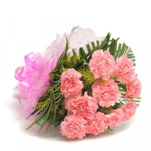 12 Pink Carnations - Send Valentine Gifts for Wife