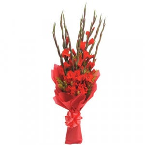 10 Red Glads - Send Valentine Gifts for Wife
