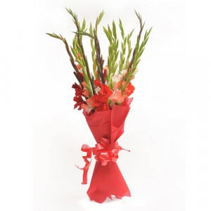 Colourful Glads - Send Valentine Gifts for Wife