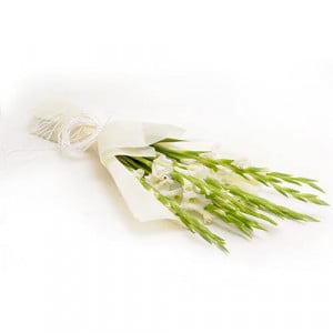 10 White Glads - Send Valentine Gifts for Wife