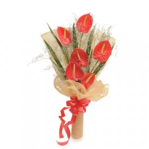 6 Red Authuriums - Send Valentine Gifts for Her