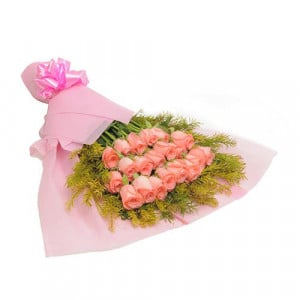 Blush 20 Baby Pink Roses - Send Flowers to Amreli Online