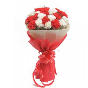 Red N White Carnations - Send Valentine Gifts for Her