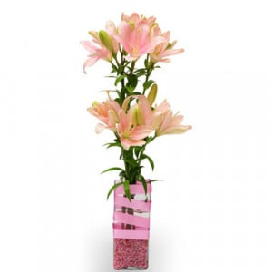 Thinking of you India - Send Flowers to Amreli Online