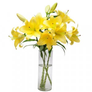 Simply Sweet - Send Lilies Online India