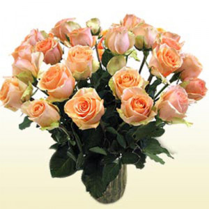 24 Versilia Roses (Peach) - Propose Day Gifts Online
