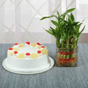 Lucky Bamboo N Pineapple Cake - Send Valentine Gifts for Her