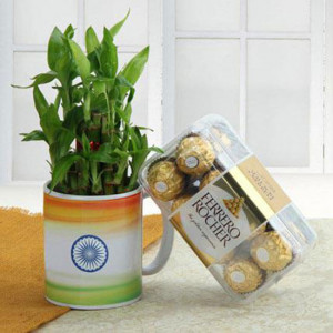 Living Indian Combo - Send Plants n Chocolates Online