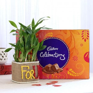 2 Layer Lucky Bamboo In For U Vase With Cadbury Celebrations - Online Gift Ideas