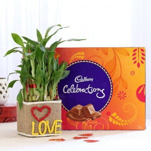 2 Layer Lucky Bamboo In Love Vase With Cadbury Celebrations - Online Gift Ideas