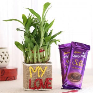 2 Layer Lucky Bamboo In My Love Vase With Dairy Milk Silk Chocolates - Online Gift Ideas