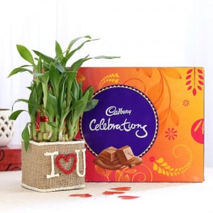 2 Layer Lucky Bamboo In I Love U Vase With Cadbury Celebrations - Online Gift Ideas