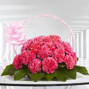 Memorable Moments 20 Pink Carnations Online - Send Valentine Gifts for Her