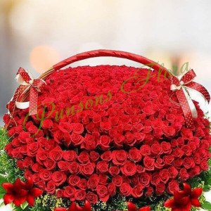 1000 red roses basket