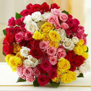 Cloud Nine 100 Mix Roses Online - Send Valentine Gifts for Her