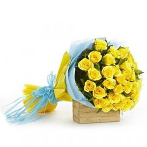 Accord Bloom 30 Yellow Roses