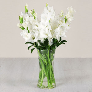 Summer Fresh 10 White Glades Online - Send Valentine Gifts for Her