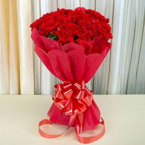 Carnival 20 Red Carnations Online - Online Flower Delivery In Kurukshetra