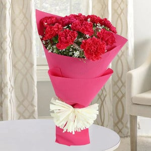 Love Feelings 10 Red Carnations - online flowers delivery in dera bassi