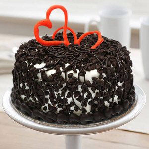 Chocolate Chip Cake Half Kg - Cake Delivery in Mumbai