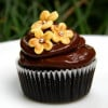 Chocolaty Top 6 Cup Cakes